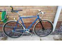 Custom Road bike Fixie singlespeed