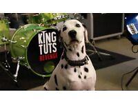 Drummer needed for established Ska / Reggae / Punk band (Also interested in Trumpet and Keys)