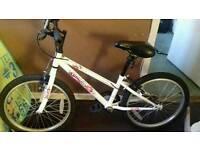 Gemini bike