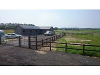Livery Spaces Available on Peaceful, Friendly yard in Pembrey!