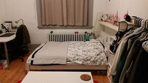 $600/month Studio Sublet for June-August, Downtown Montreal