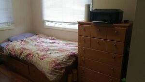 1 room spring term sublet May-Aug 2017 (females only)
