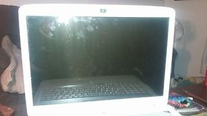 Acer laptop w. 17 in screen.  2 large hds Quad core. win 10