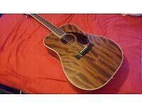 Fender PM-1 Acoustic Guitar