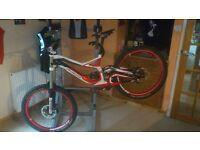 Specialized Downhill Mountain Bike