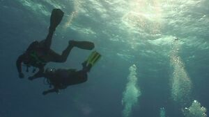 IANTD Open Water Diver SCUBA Course - CLASSES FORMING NOW Windsor Region Ontario image 3