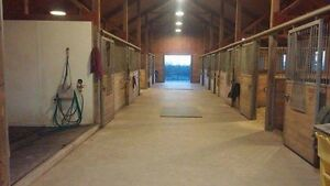 Boarding at Rougemont/four winds equestrian Cambridge Kitchener Area image 2