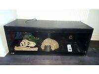 Large black vivarium - 250 x 70 cm