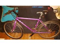 Ladies girls bike Specialized Hard Rock purple mountain road cycle 50cm