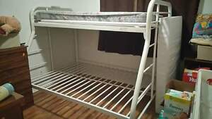 ***Twin over double bunk bed need gone asap