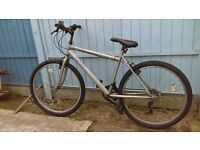 trax silver bike,18 gears,26 inch wheels.collect oulton broad.