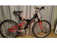 adult raleigh full suspension mountain bike