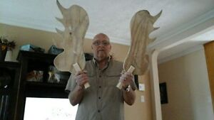 Home made moose antlers
