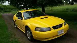 1999 Ford Mustang Coupe (2 door) 35th Anniversary Model