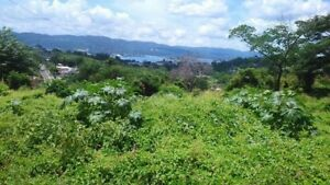 Montego Bay St. James Jamaica 3 Lots 1/4 acres each for Sale