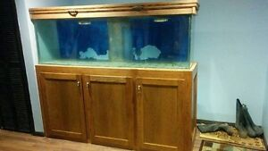 150g aquarium with 60 g sump hood and stand NEW PRICE