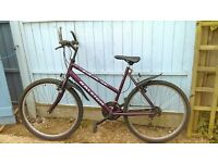 raleigh max extra bars can come off handle bars dark purple.15 gear.26 inch wheels.