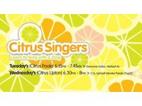 Fun Choir looking for singers in Poole and Upton / Lytchett Minster