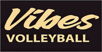 Markham Co-ed Recreational Volleyball