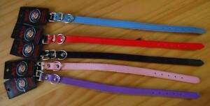 Faux Leather Dog Collar - Assorted Colours Available - Brand New Morphett Vale Morphett Vale Area Preview