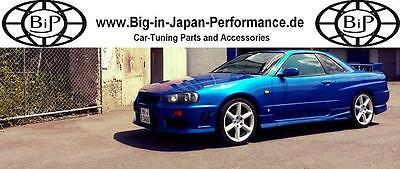 Big-in-Japan-Performance