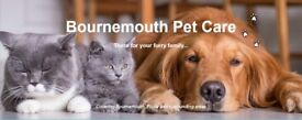 Bournemouth Pet Care: Pet Sitter | Dog Walking | Dog Walker | Cat feeding