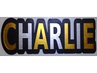 CHARLIE 6mm thick door / name plaque painted in black and shimmering metallic GOLD & SILVER