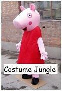 Cartoon Fancy Dress Costumes