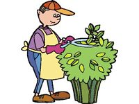 Experienced gardener can help You or even make some big changes in Your garden !!!