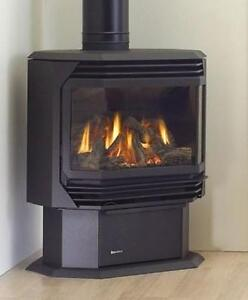 Fire Place/Freestanding Gas Stove