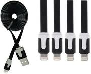 iPhone 4 Charger Black
