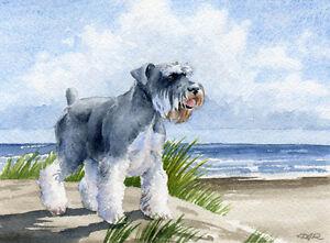 MINIATURE-SCHNAUZER-Beach-DOG-Watercolor-8-x-10-Art-Print-Signed-by-Artist-DJR