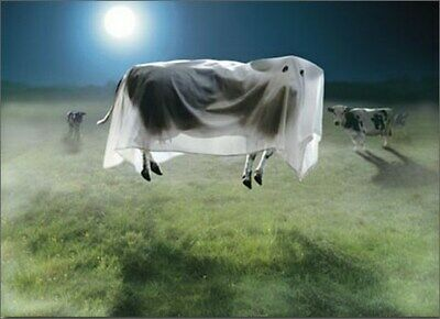 Ghost Cow Standout Stand Out Pop Up Halloween Card by Avanti Press