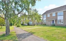 3 bed house to let, Worplesdon, Guildford, £1500pcm, available Jan 2018
