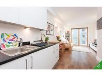 ONE BEDROOM FLAT TO RENT, BRIGHTON BELLE, BRIGHTON, FURNISHED