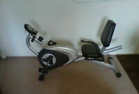 Spirit Recumbent Exercise Bike