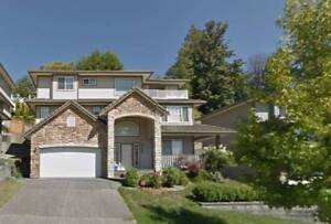 Neat 4bed&2.5bath house rent in Albion Maple Ridge