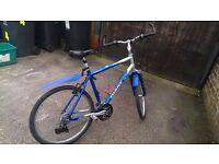 Bike GIANT sale or swop for woman bike