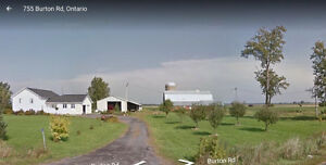 Potential Hobby Farm or Business Residence