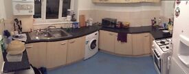 are you looking for big single room? close to the tube station Bow Road