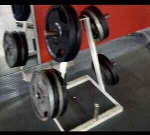 6 horn A frame olympic weight plate tree