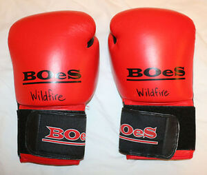 Boxing Gloves BOeS 10 Oz 26   Size M to L