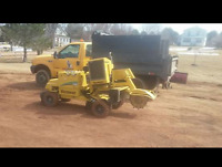 Stump grinding / tree removals