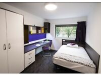 Ensuite room available at Sir Charles Groves Halls