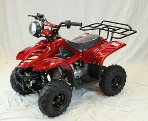 Kids ATVs. 110cc, 125cc and Electric Available