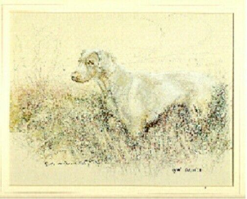 Weimaraner Weim Limited Edition Art Print by UK Artist Gill Evans*