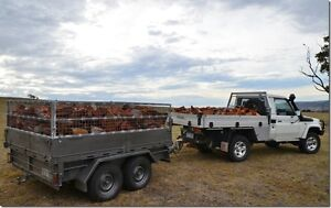 Firewood * Redgum Mix* Most suburbs. Marion Marion Area Preview