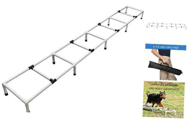 Agility Training Ladder   Dog Agility Training Equipment   Dog Training