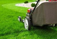 Lawn Cutting - Clean ups,  Fertilizer,  Aerations.  * Best Price