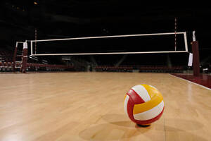 Recreational Volleyball Players(Adult) needed.